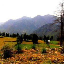 Tehsil Nagseni